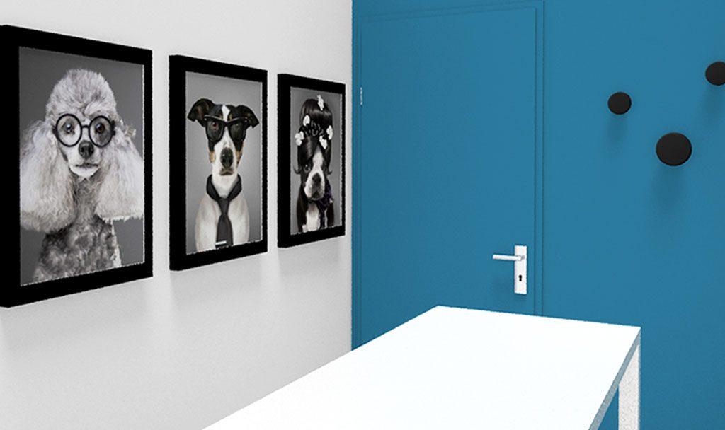 Agencement et aménagement cabinet vétérinaire |DOUVAINE | BALTYS